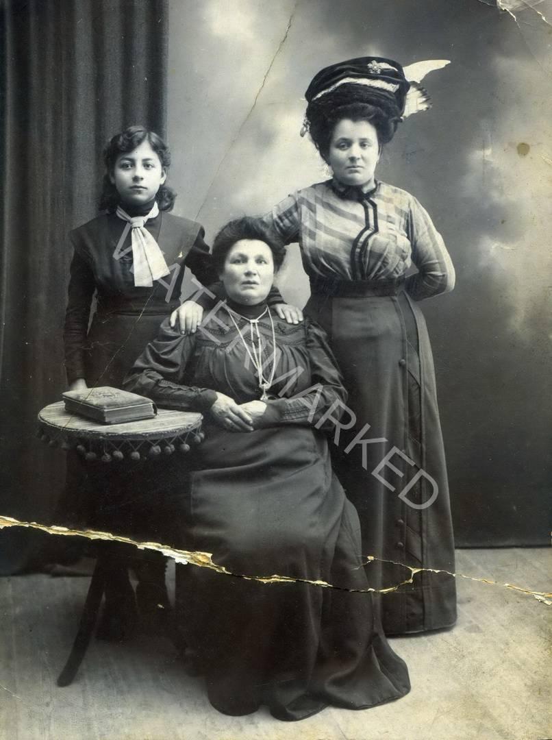 לודביפול משפחת ולמן