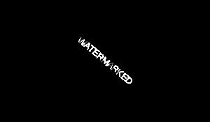 ציטטה-הרצל-למובייל